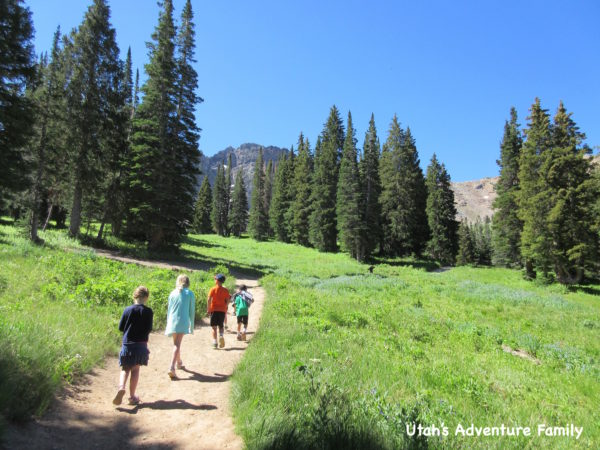 The trail is beautiful. We enjoy the hike as much as the lake.
