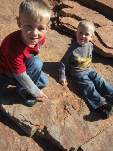 Our boys loved finding the dino tracks.