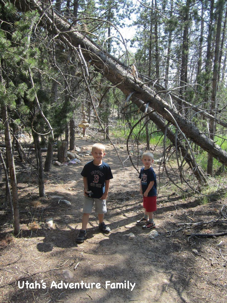 The boys at the unofficial entrance to the Fairy Forest