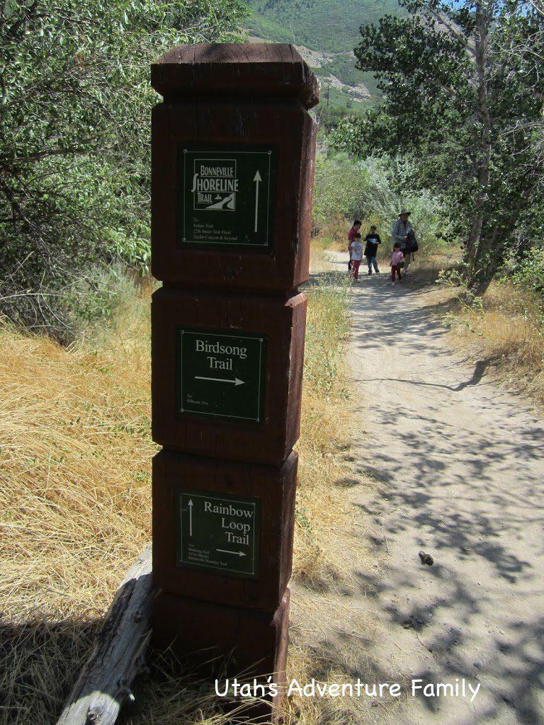 Birdsong Trail