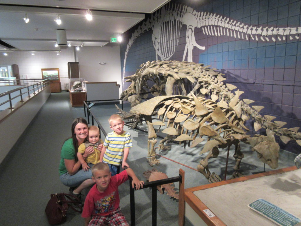 We love dinosaurs! This is an ankylosaurus.