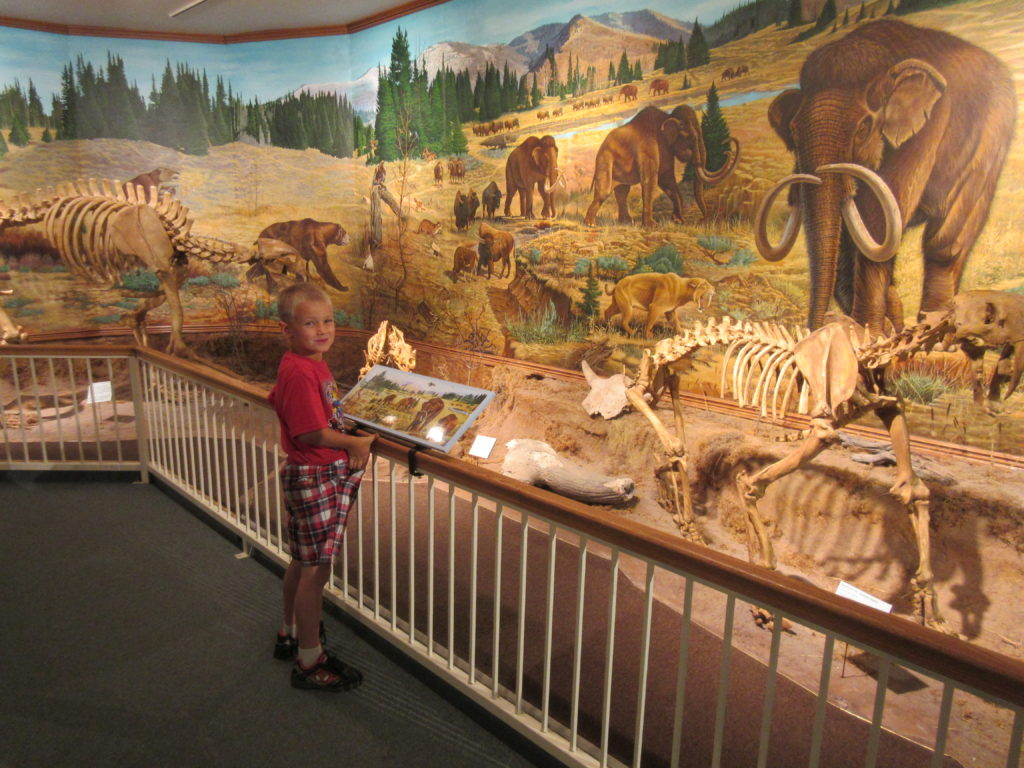 There were fossils of animals from the Ice Age.