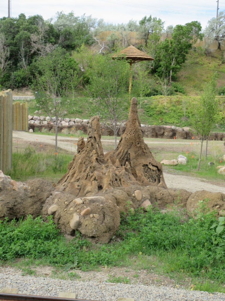 There are termite mound in the African Savanna.