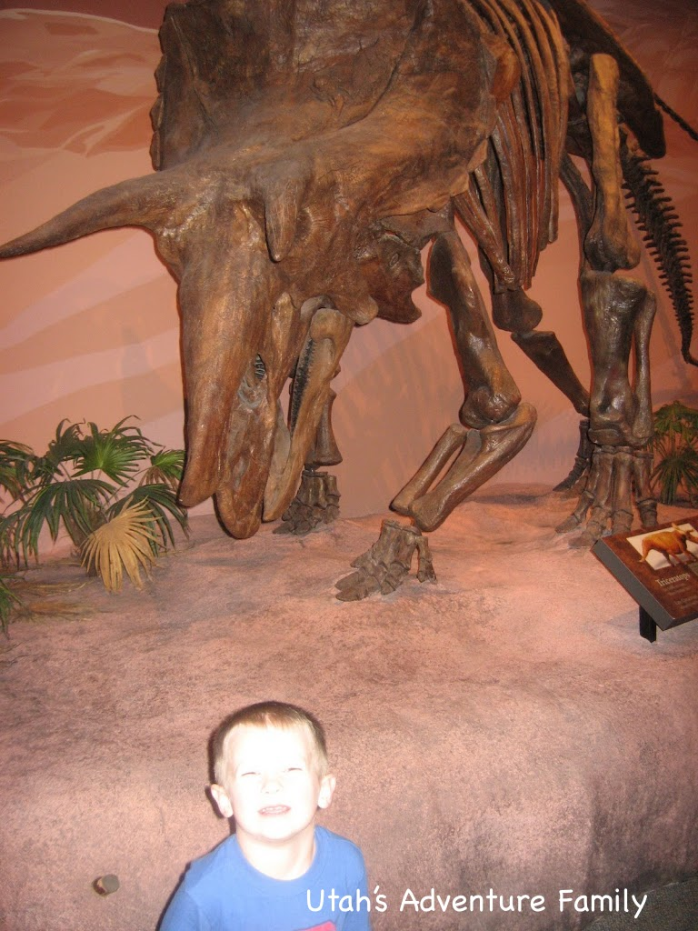 Museum of Ancient Life has lots of hands-on activities for the kids.