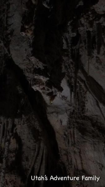 water droplet in Lehman Caves