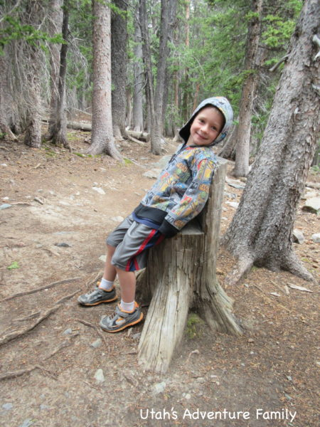 The hike is through the trees which kept it shady, and we found some fun seats for resting.