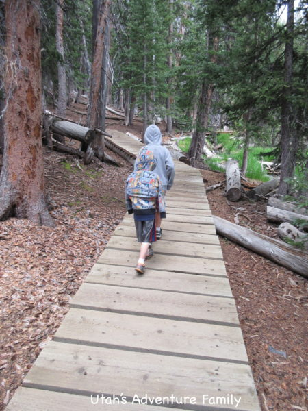 Part of the trail is on boardwalks.