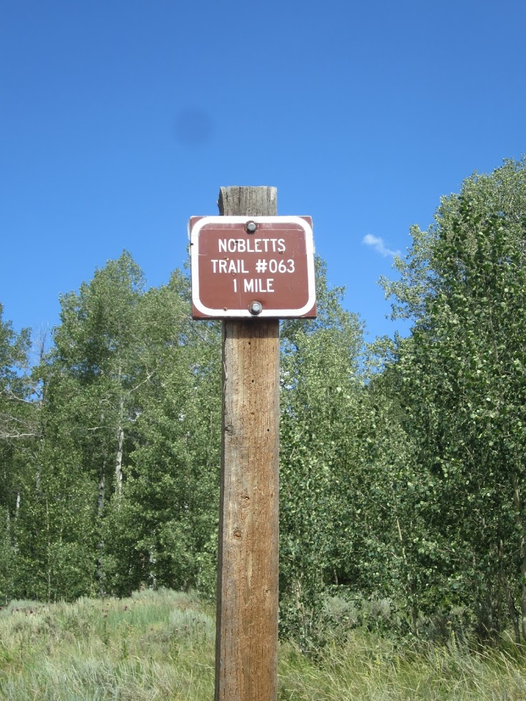 The trail passes this sign on the left.