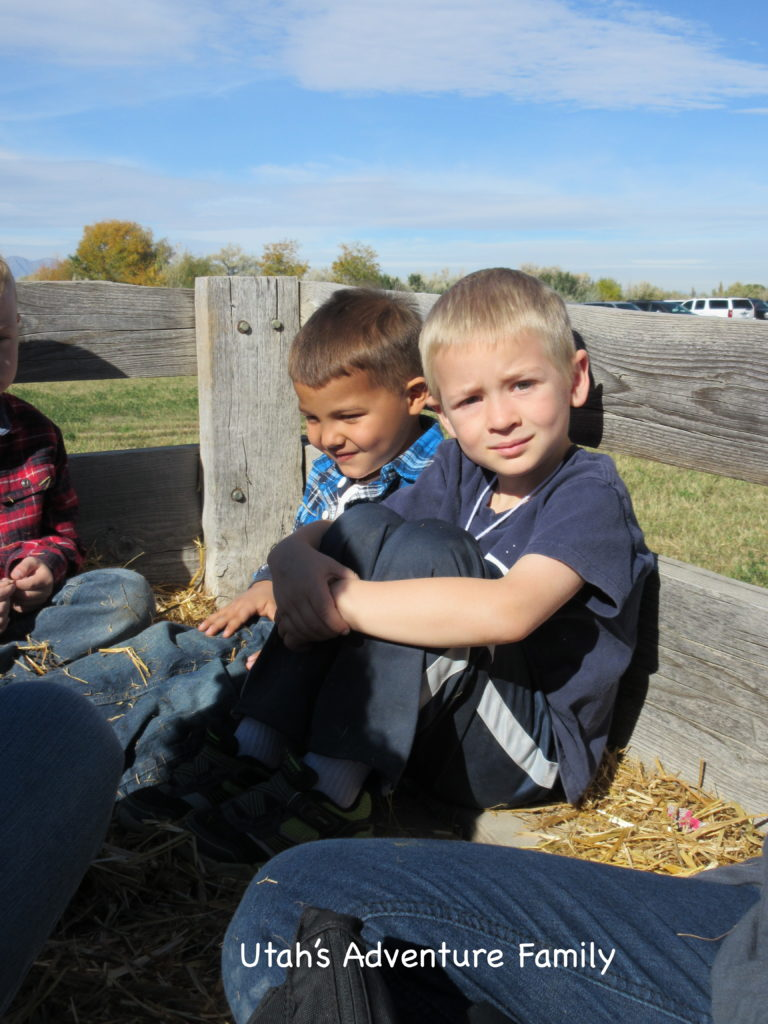 The wagon ride was pulled by a tractor and was only down the field and back again, but the kids loved sitting in the straw for the ride!
