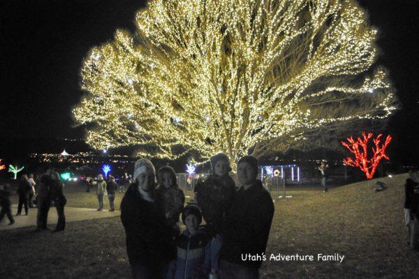 Tree Lighting Events