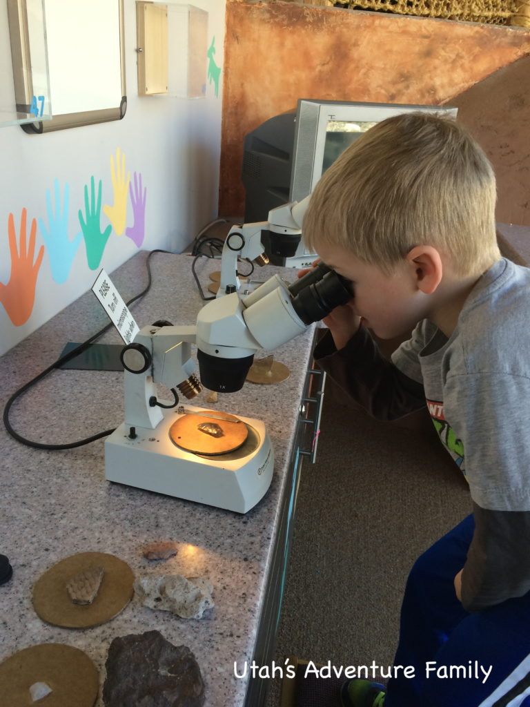 The microscopes were a lot of fun!