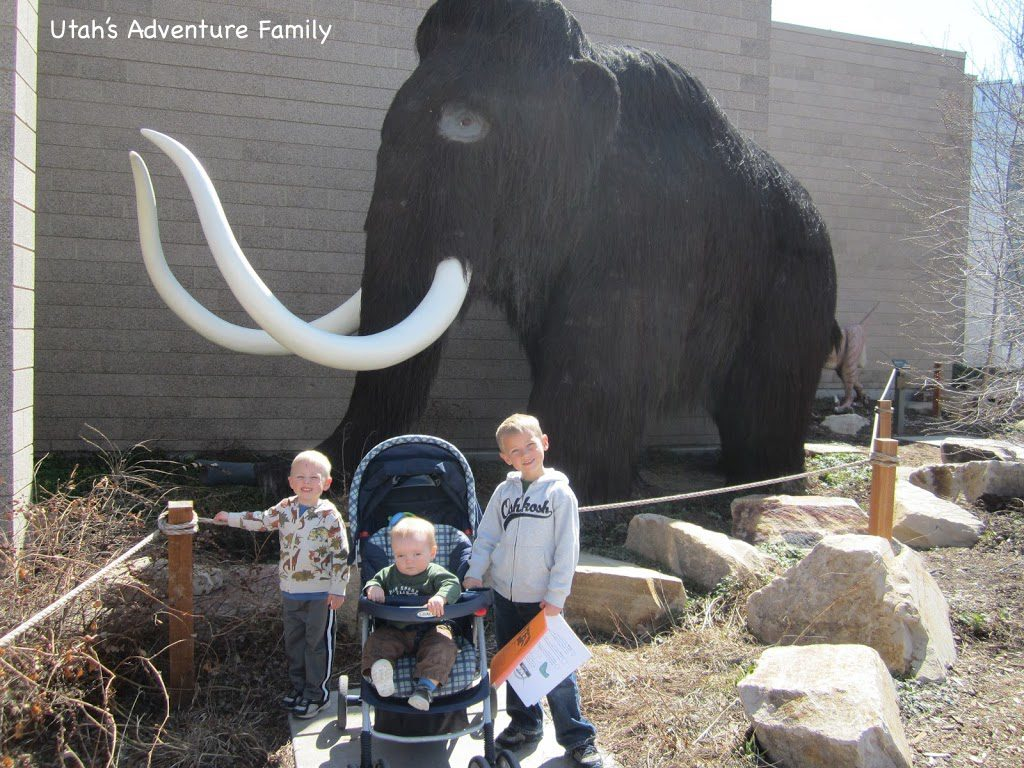 Wooly Mammoth was voted 2nd best.