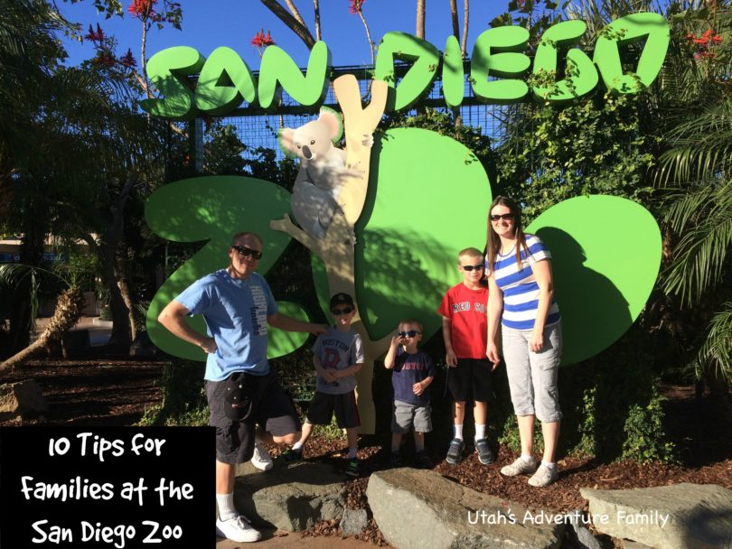 San Diego Zoo 10 Tips For Families Utah S Adventure Family