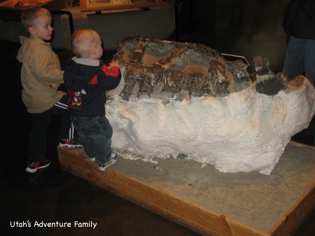 The boys touching a fossil.