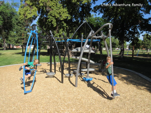 There are a huge variety of playground toys to play with.