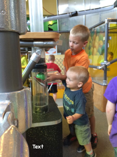Our boys love the beehive exhibit with all the balls. We spent a lot of time here.