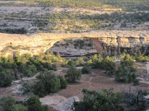 This is the Owachoma Bridge--largest in the park.