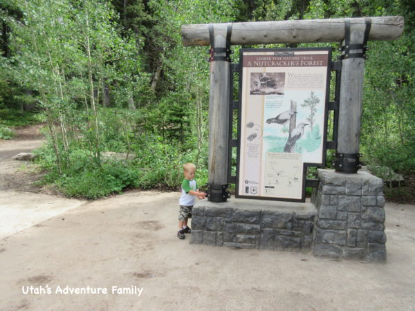 The trail starts by the informational sign.