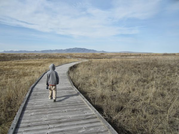 Great Salt Lake Shoreland Preserve