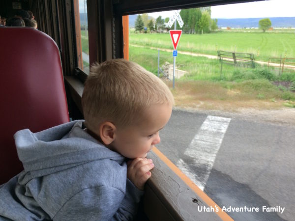 Our almost four-year-old was in heaven. This was the perfect excursion for him!