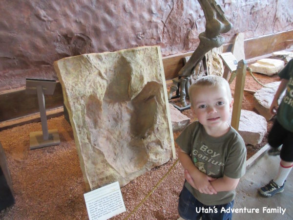 st. george dinosaur discovery site at johnson farm T-Rex track
