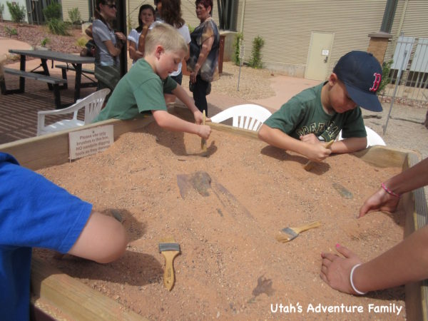 brushing off fossils at the St. George Dinosaur Museum.