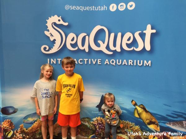 SeaQuest 8