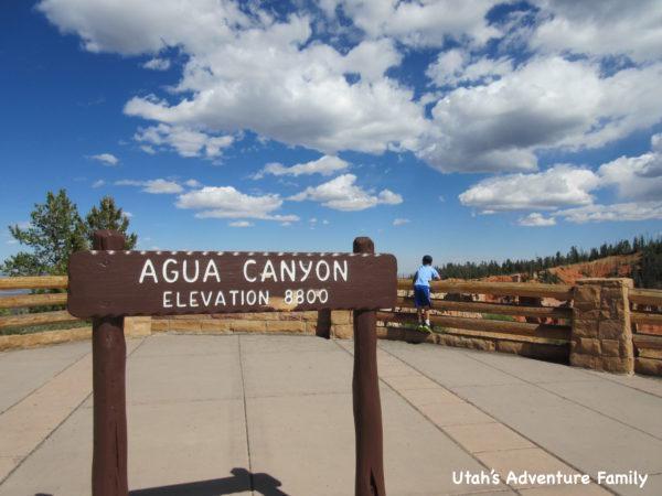 Bryce Canyon 8