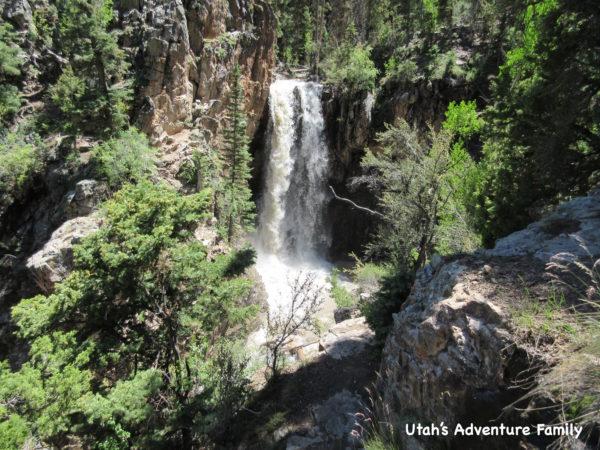 Bullion Falls is a very beautiful waterfall!