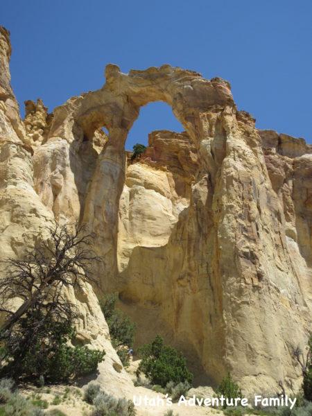 Grovesnor Arch 5