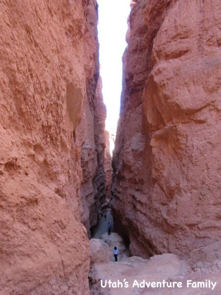Navajo Loop 10