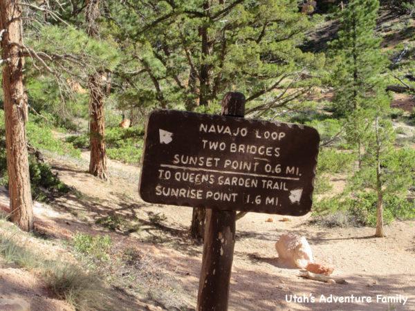 Navajo Loop 14