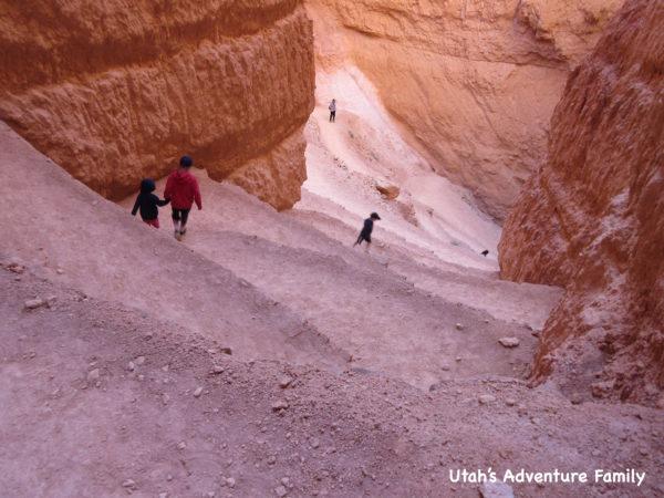 Navajo Loop 9