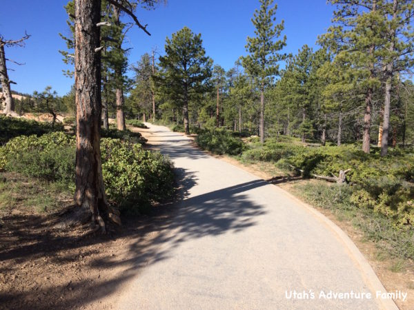 Rim trail 1