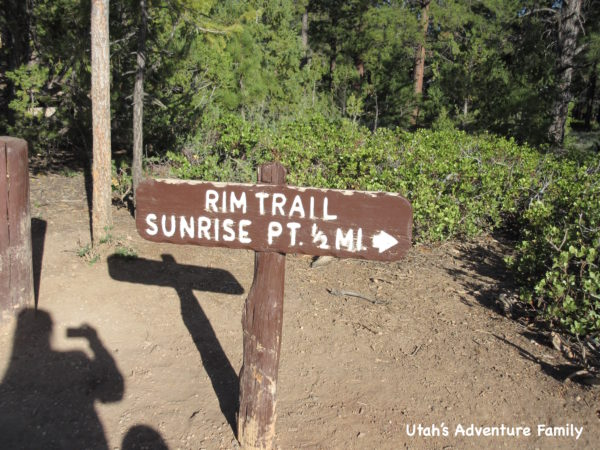 Rim trail 6