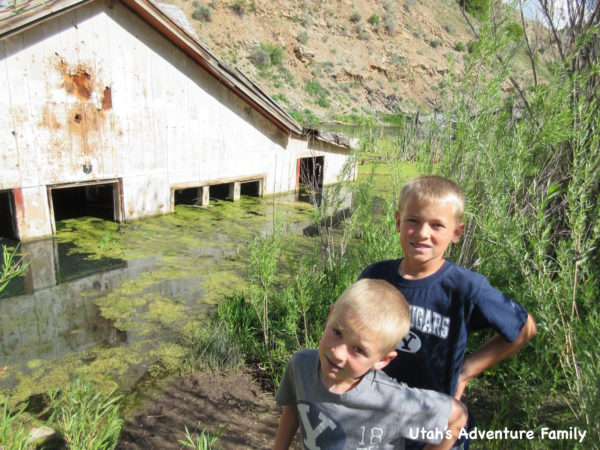 We pulled over and walked to the edge of the water to check out the old buildings--many that still are in the water.