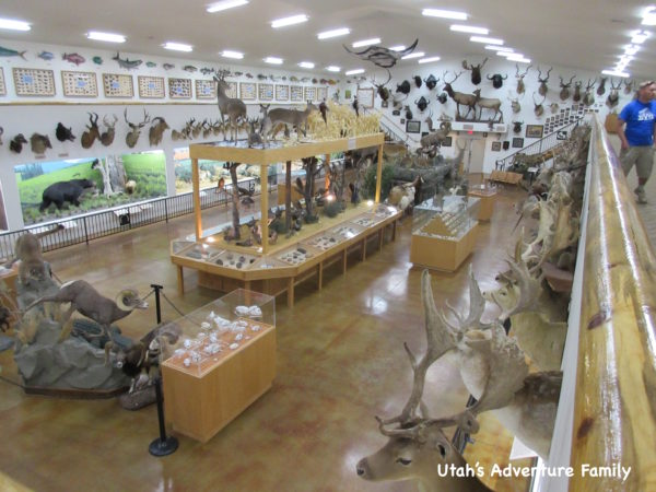 Bryce Canyon Museum 10
