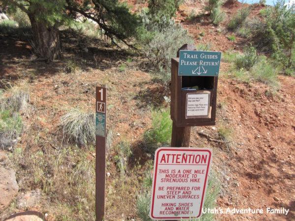 Escalante Petrified Forest 1