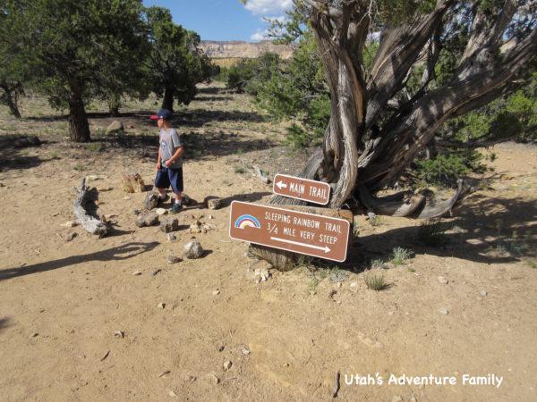 Escalante Petrified Forest 8