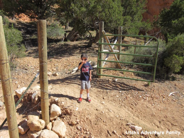 Red Canyon 16