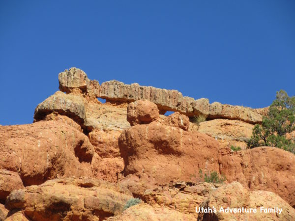 Red Canyon 22