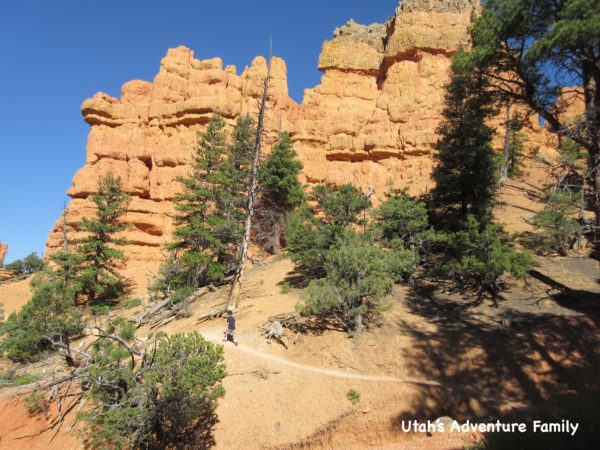 Red Canyon 9