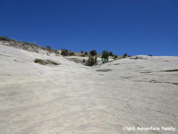 Twenty Mile Wash Dinosaur Tracks 2