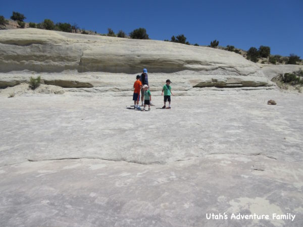 Twenty Mile Wash Dinosaur Tracks 3