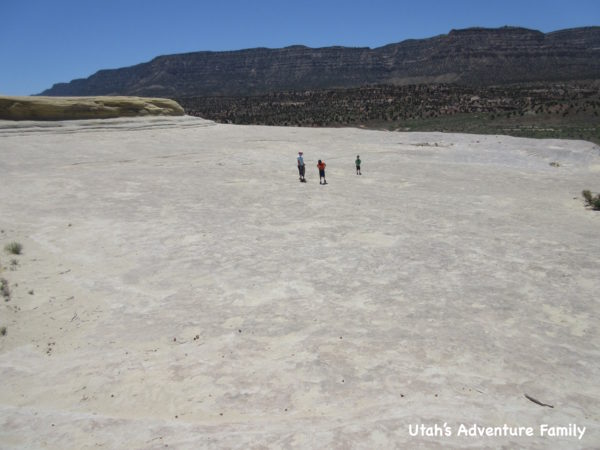 Twenty Mile Wash Dinosaur Tracks 5