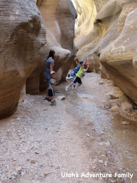 Willis Creek 11