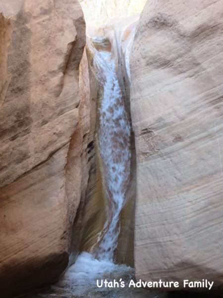 Willis Creek 9