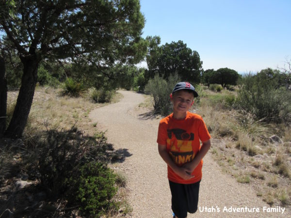 Guadalupe Mountains National Park 6