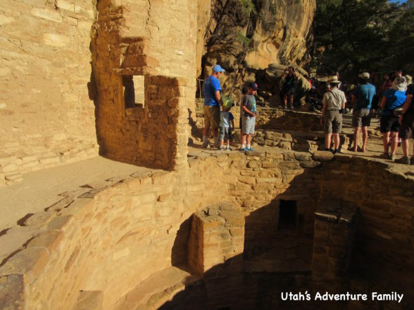 cliff-palace-14