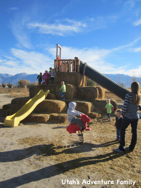The playground area was a lot of fun.